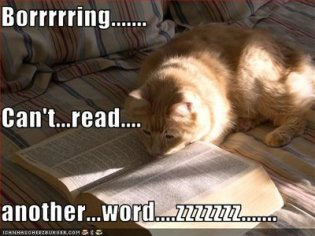 boring+book+cat[1].jpg